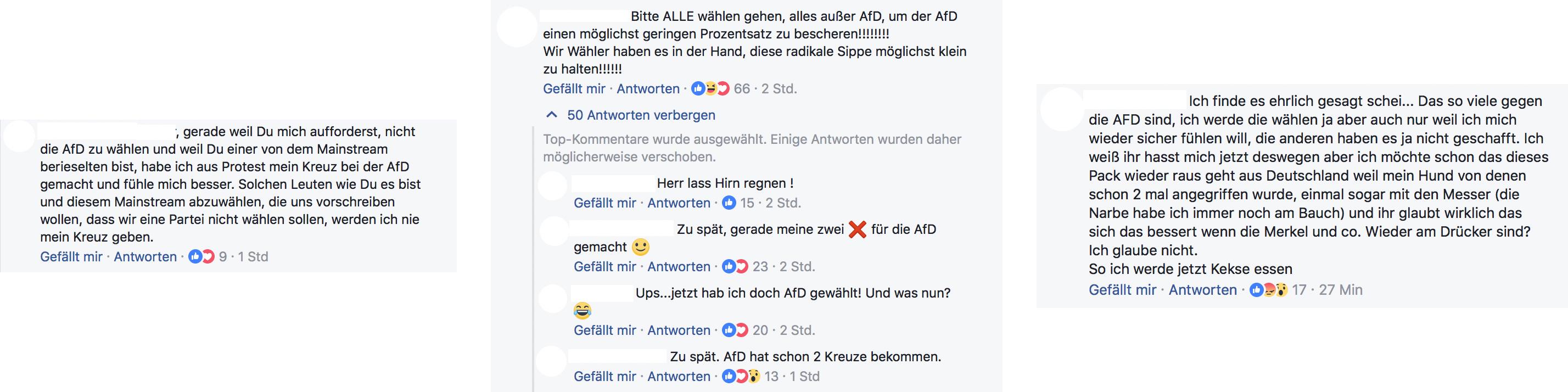 Bundestagswahl_1 Kopie Kopie