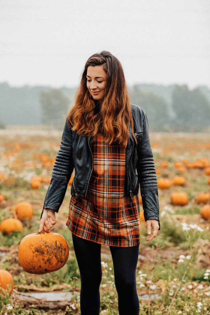 Zack, Herbst | ein Herbst TAG