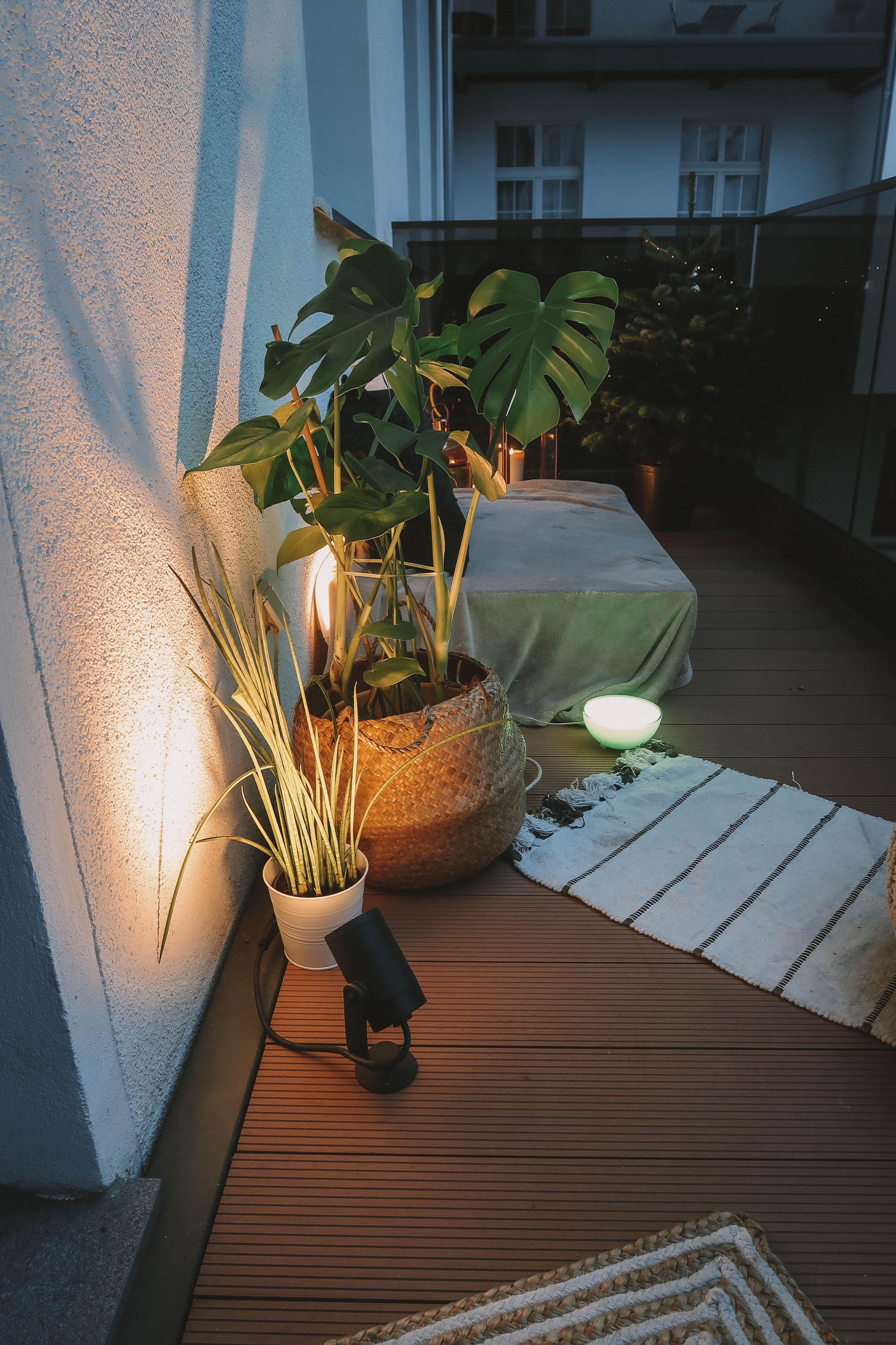 Mein Neuer Balkon In Berlin Luiseliebt